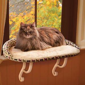 Cat Perch Window