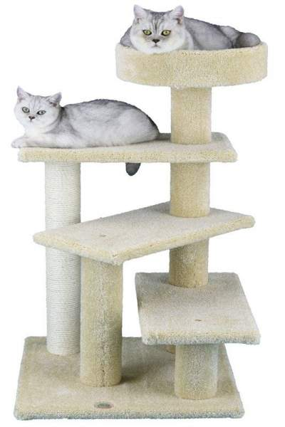 Best carpeted cat tree for large cats