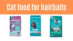 cat food for hairballs