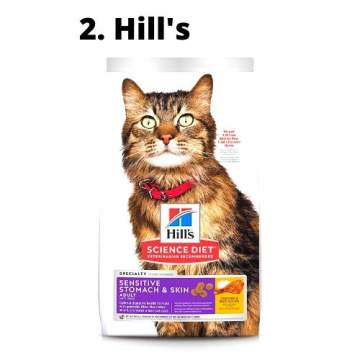 best cat food for cats with sensitive stomach