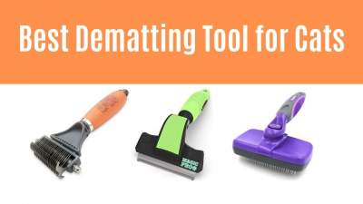 Best Dematting Tool for Cats