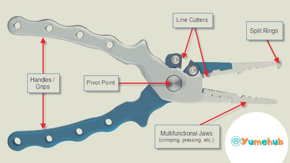 How to Select the Best Fishing Pliers