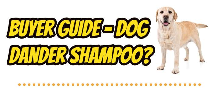 Buying Guide: 7 Best Dog Shampoo to Reduce Dander