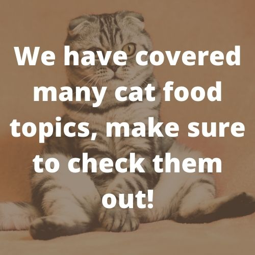 we covered many cat food topics, make sure to check them out
