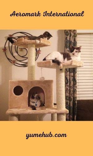 Cat Trees For Senior Cats 3