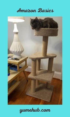 Cat Trees For Senior Cats 15